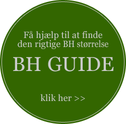BH guide